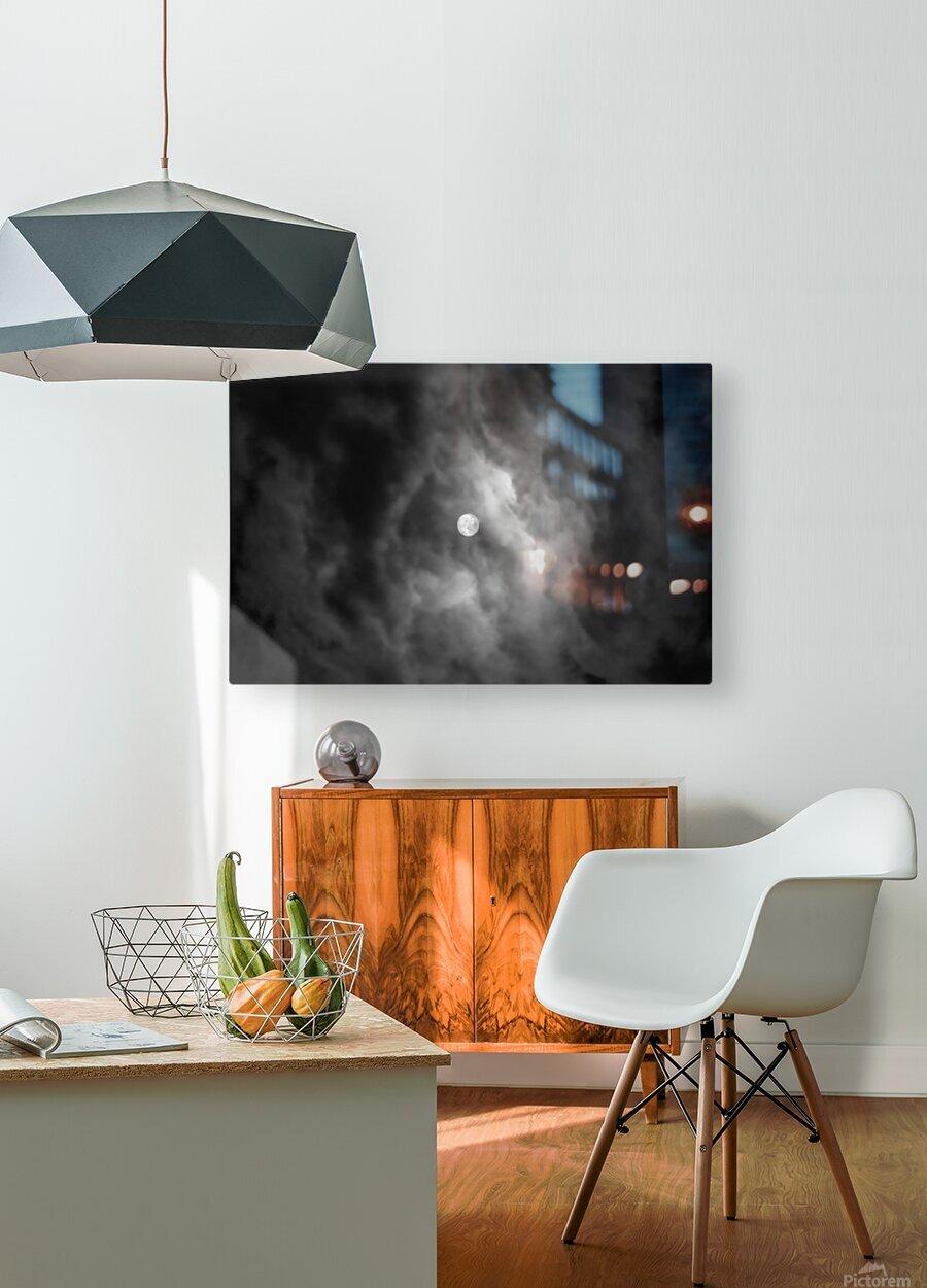 GODDESS ALA 002  HD Metal print with Floating Frame on Back