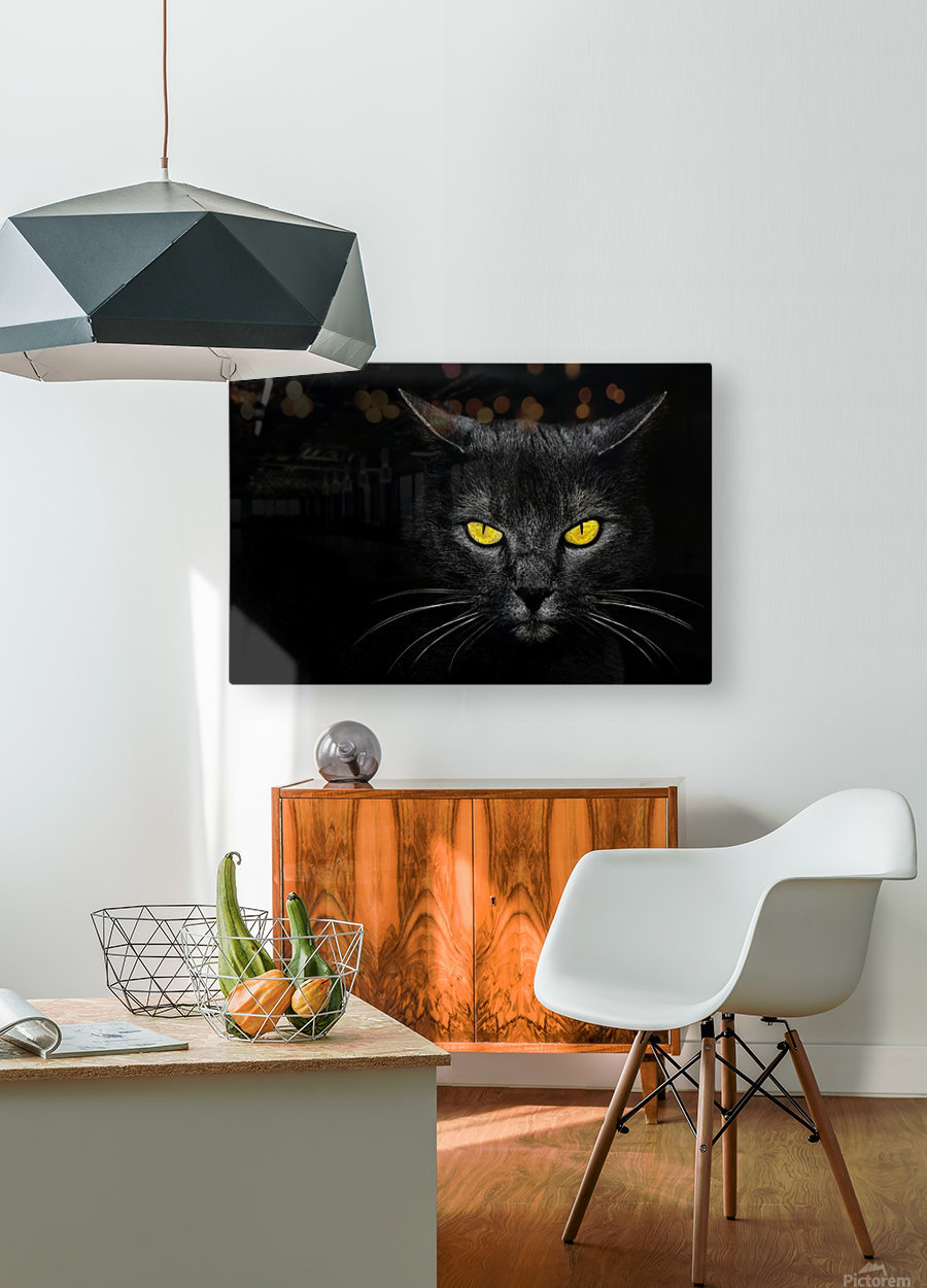 Monster Kill  HD Metal print with Floating Frame on Back
