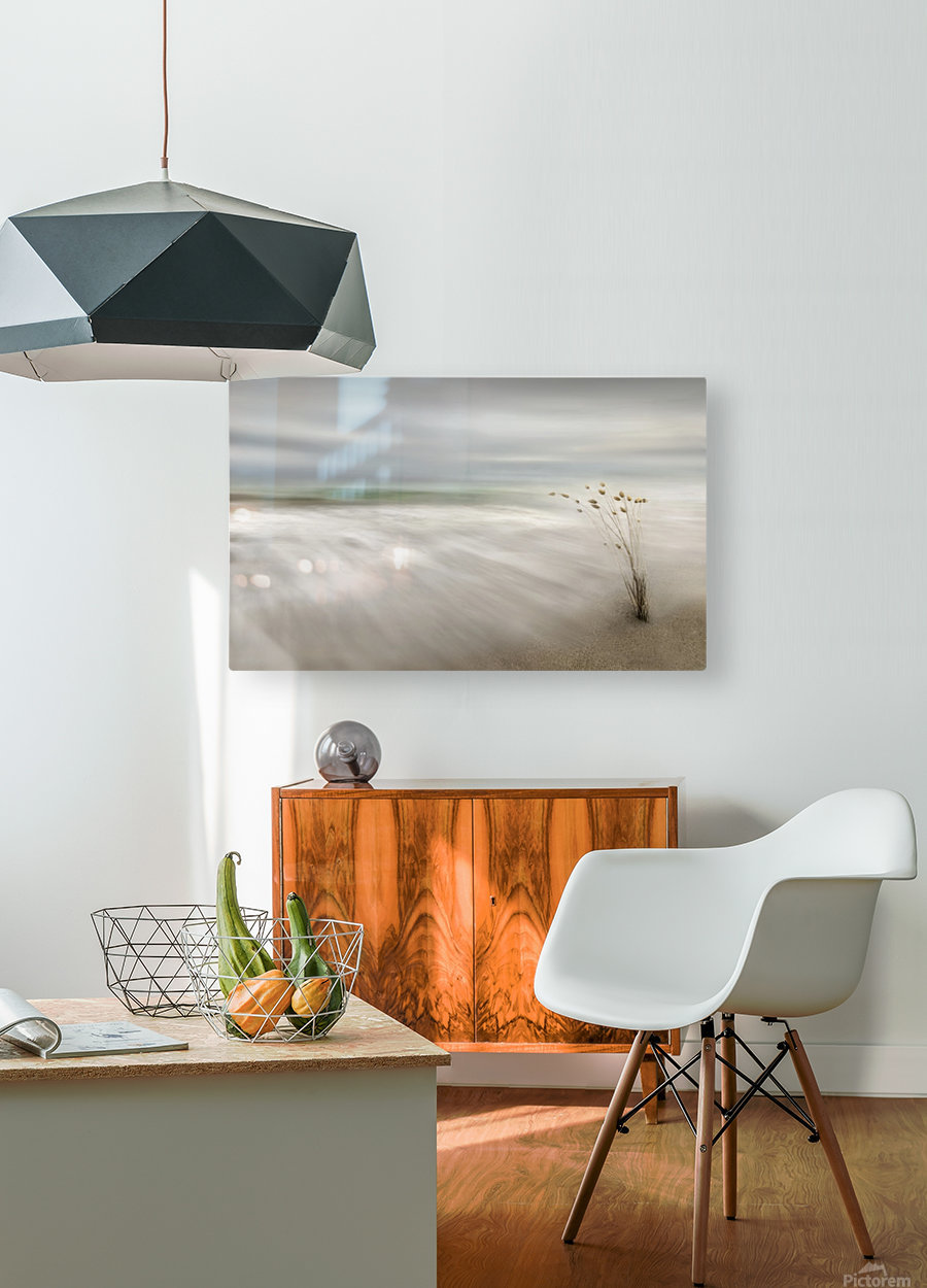 Ears in the Sea  HD Metal print with Floating Frame on Back