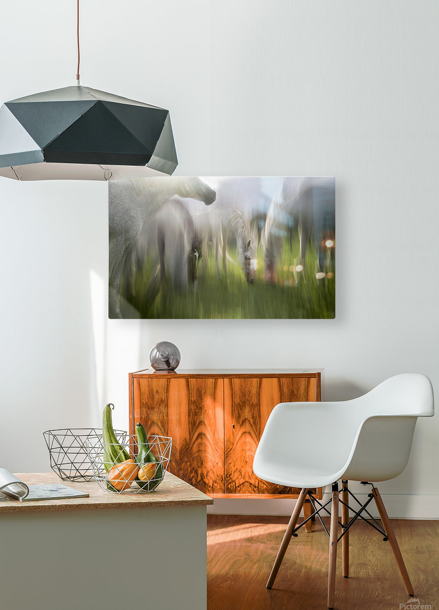 Impression by milan malovrh   HD Metal print with Floating Frame on Back