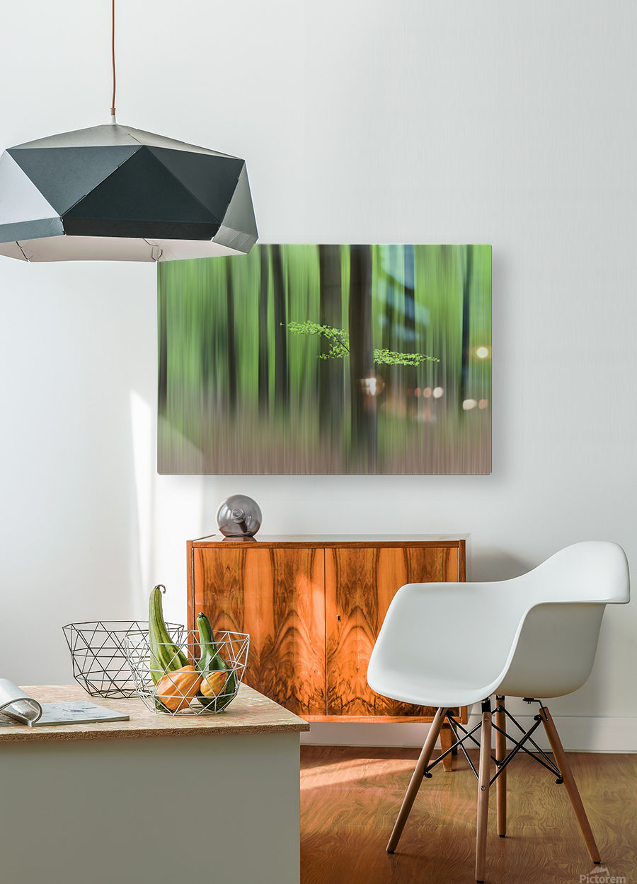 Spring Morning  HD Metal print with Floating Frame on Back