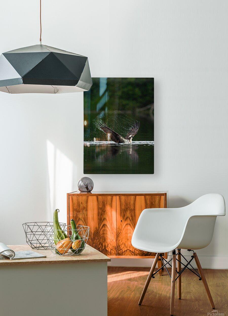 Wesley Allen Shaw 01134  HD Metal print with Floating Frame on Back