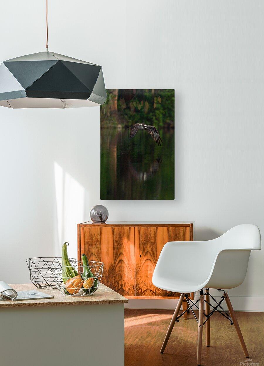 Wesley Allen Shaw 00747  HD Metal print with Floating Frame on Back