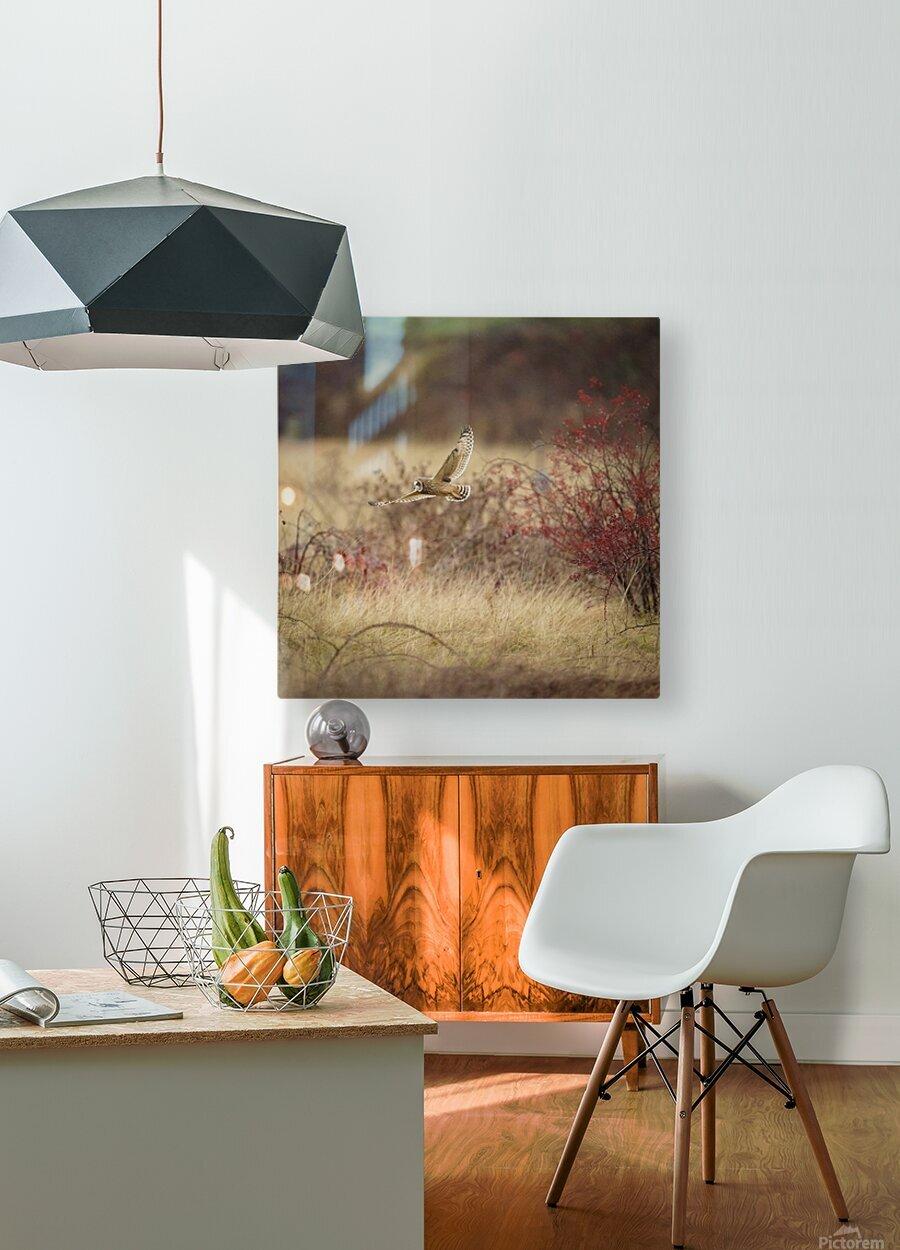 Wesley Allen Shaw 02085  HD Metal print with Floating Frame on Back