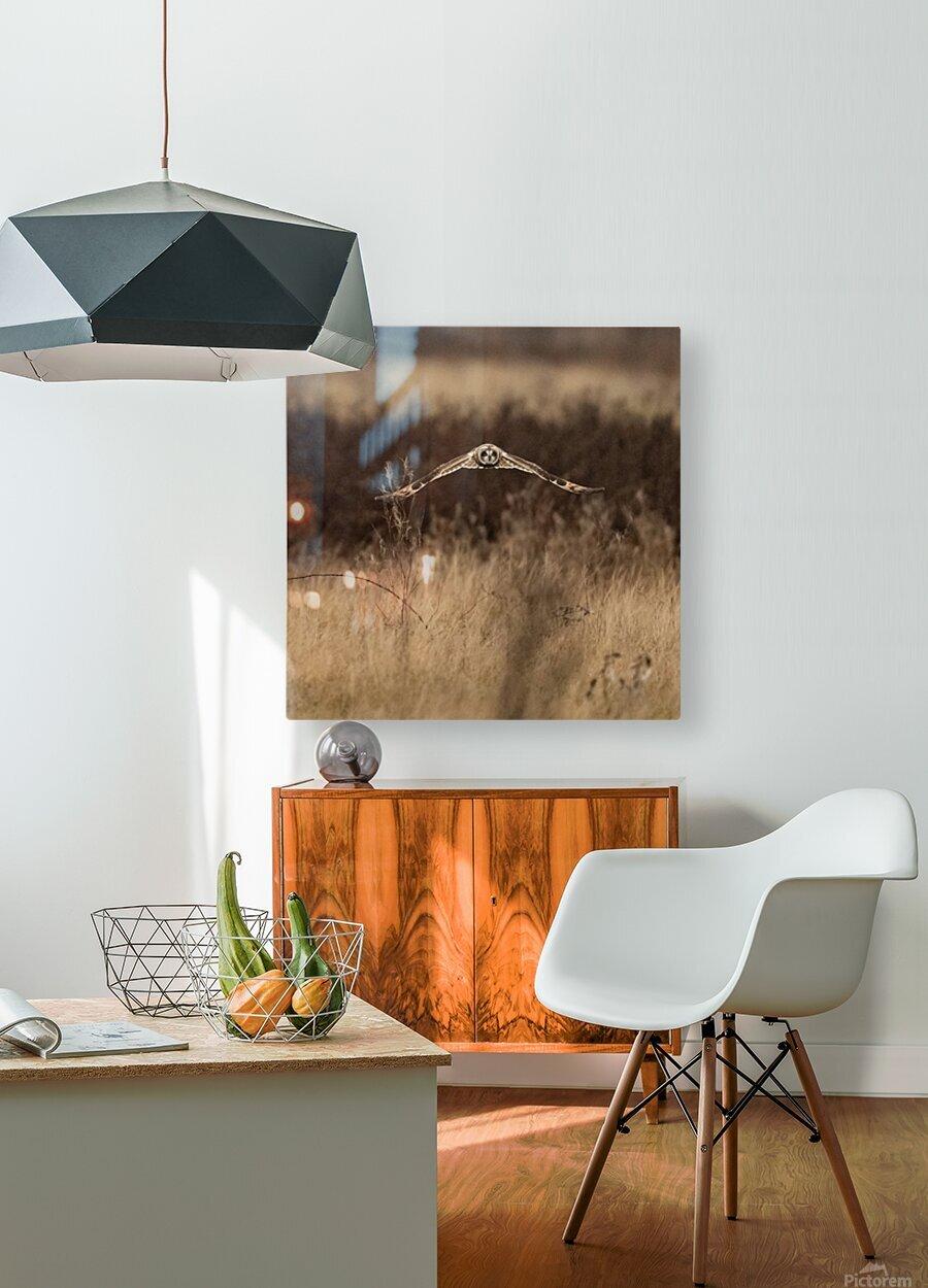 Wesley Allen Shaw 02245  HD Metal print with Floating Frame on Back