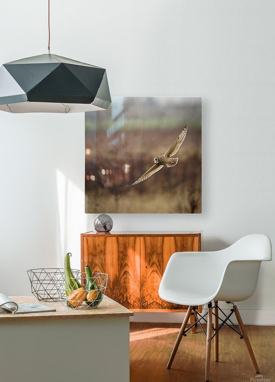 Wesley Allen Shaw 02128  HD Metal print with Floating Frame on Back