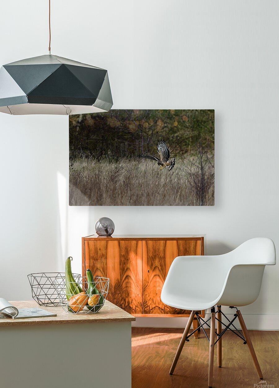 Wesley Allen Shaw 01906 1609735001.972  HD Metal print with Floating Frame on Back