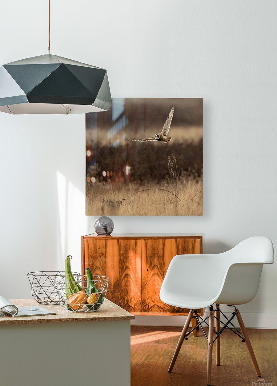 Wesley Allen Shaw 02250  HD Metal print with Floating Frame on Back
