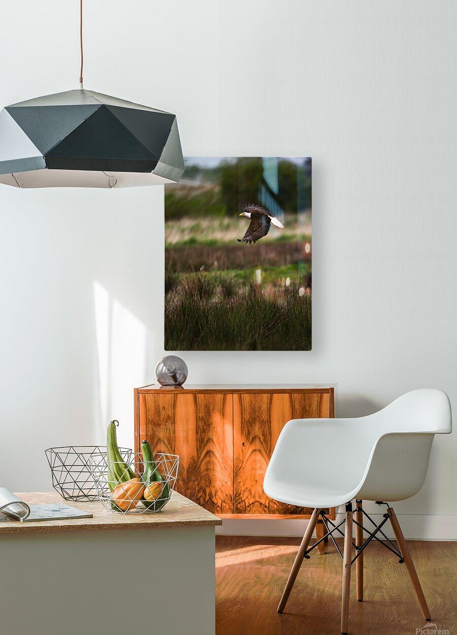 Wesley Allen Shaw 04650  HD Metal print with Floating Frame on Back
