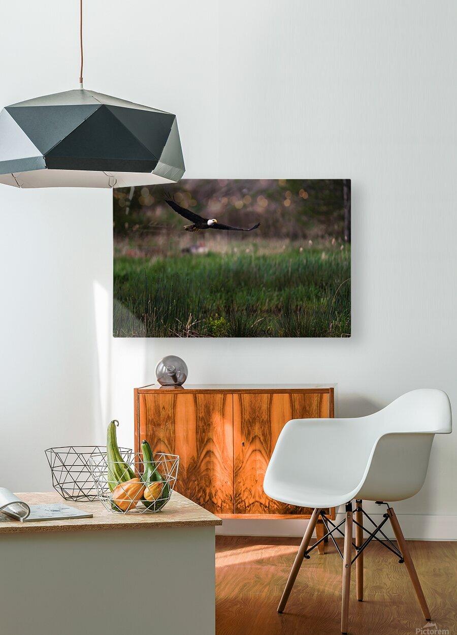 Wesley Allen Shaw 04576  HD Metal print with Floating Frame on Back