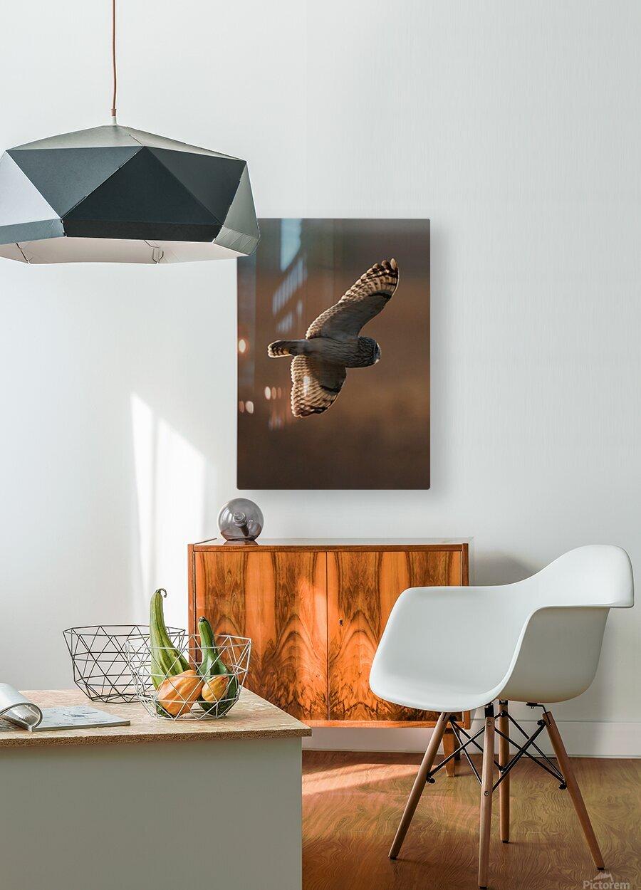 Wesley Allen Shaw 09068  HD Metal print with Floating Frame on Back