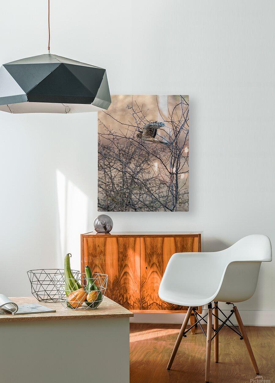 Wesley Allen Shaw 09307  HD Metal print with Floating Frame on Back