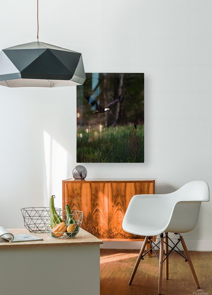 Wesley Allen Shaw 04579  HD Metal print with Floating Frame on Back