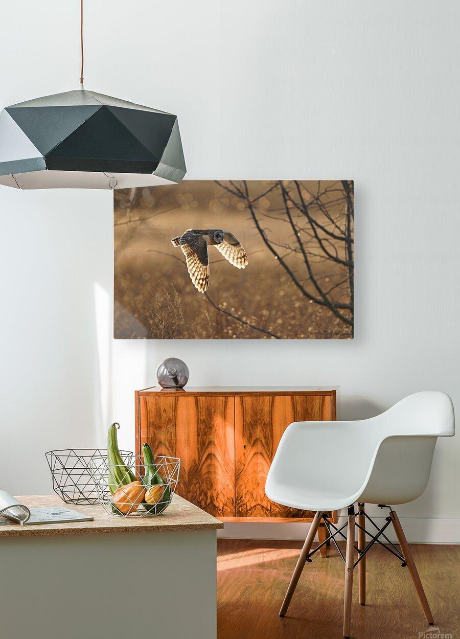 Wesley Allen Shaw 08859  HD Metal print with Floating Frame on Back