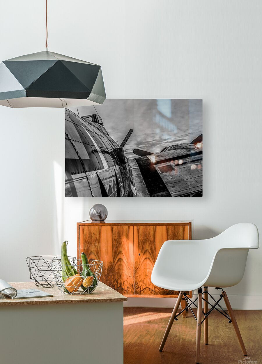 Over The Wing  HD Metal print with Floating Frame on Back
