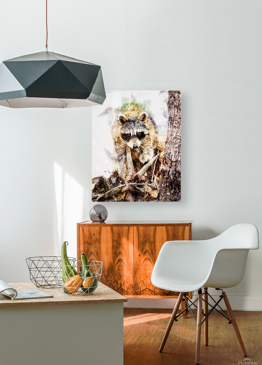 Raccoon In The Woods  HD Metal print with Floating Frame on Back
