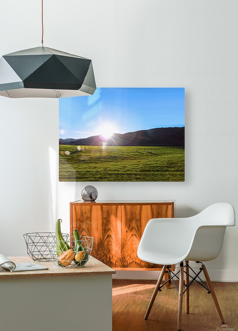 One Day in Wales 5 of 5  HD Metal print with Floating Frame on Back