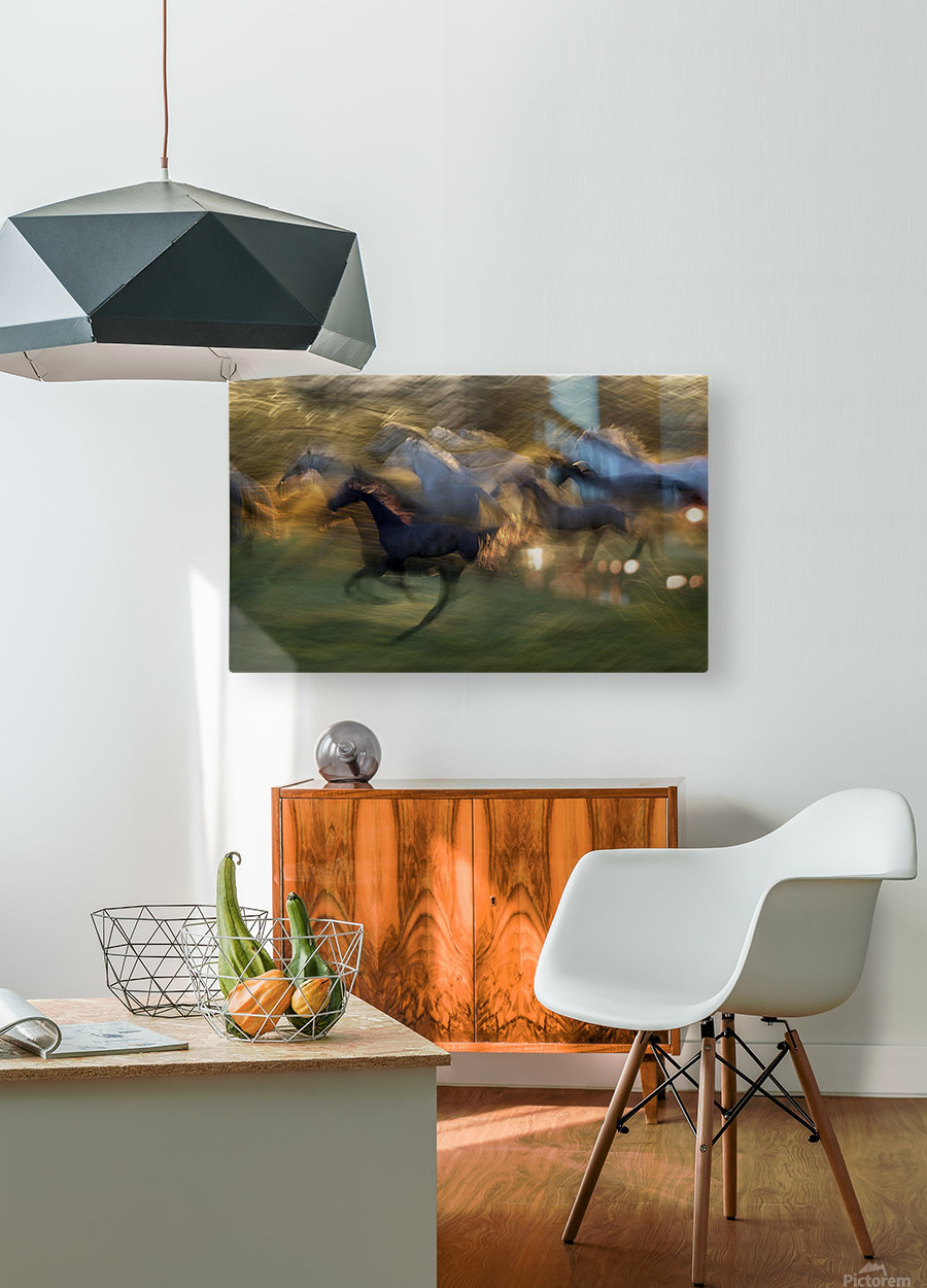 fiery gallop by milan malovrh   HD Metal print with Floating Frame on Back