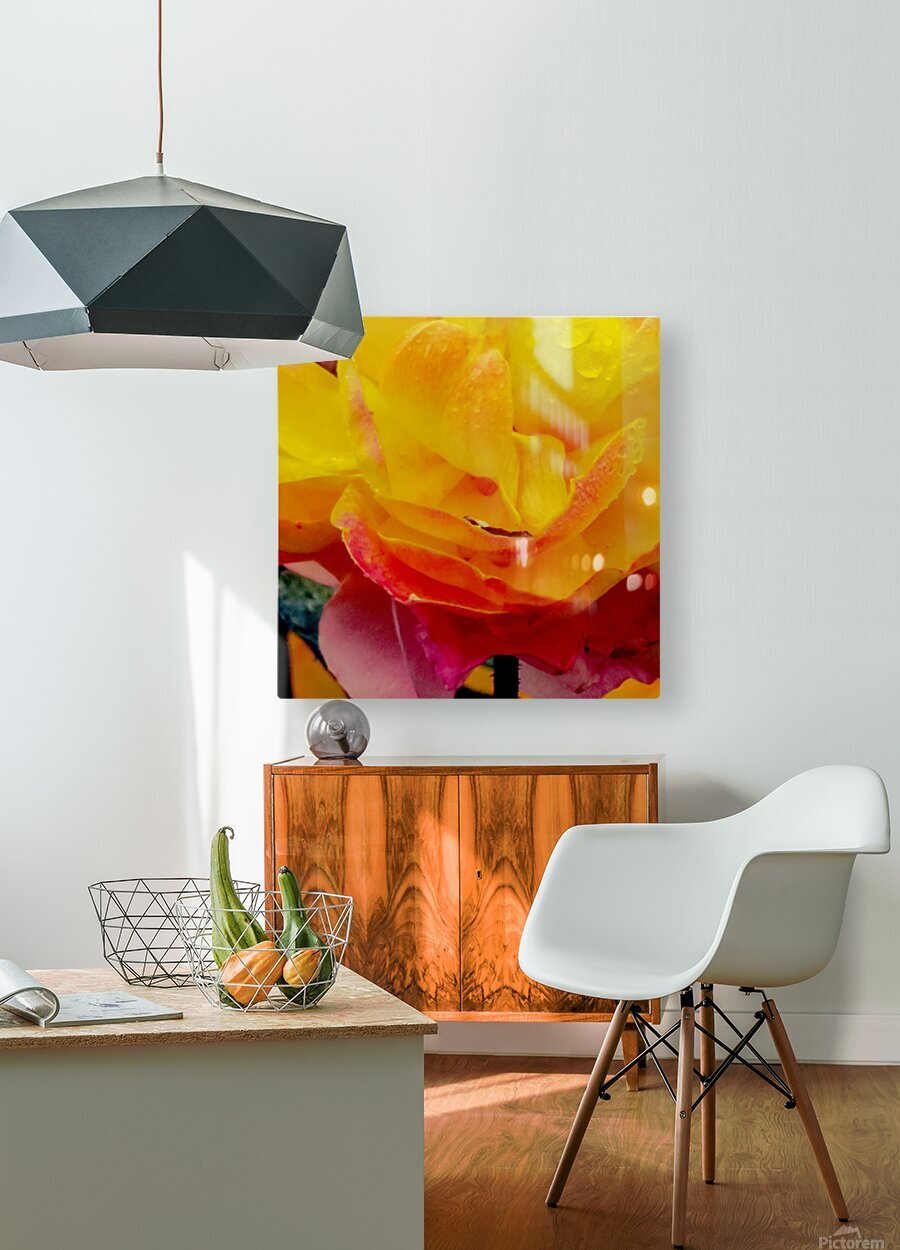 20181121 IMG 2710  HD Metal print with Floating Frame on Back