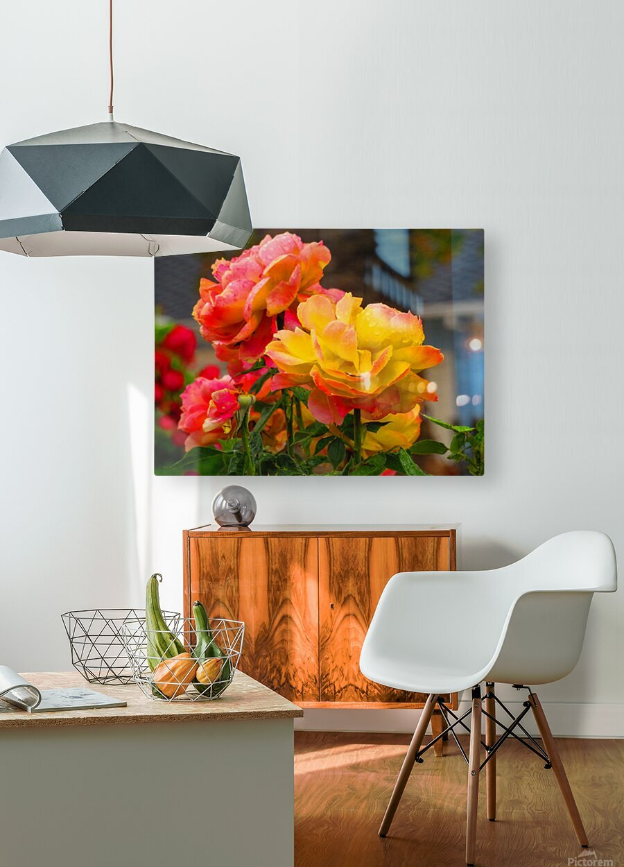20181121 IMG 2684  HD Metal print with Floating Frame on Back