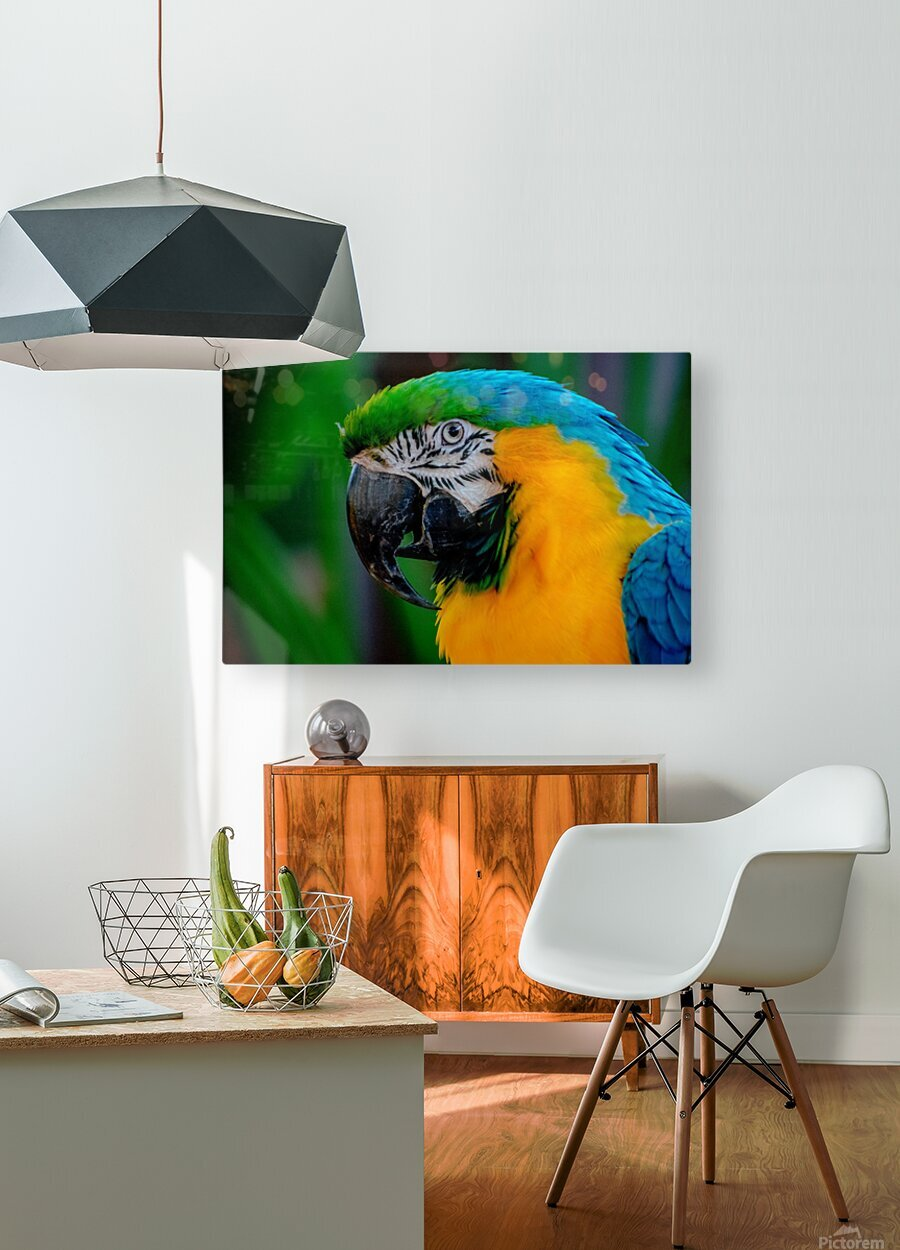 20181021 DSC 0292  2  1  HD Metal print with Floating Frame on Back