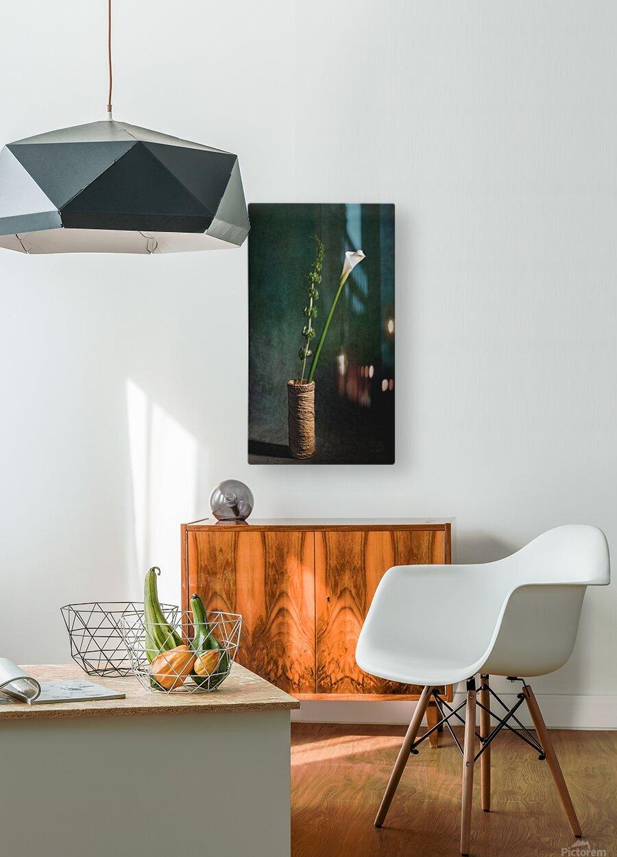 Etude Zen 3m  HD Metal print with Floating Frame on Back