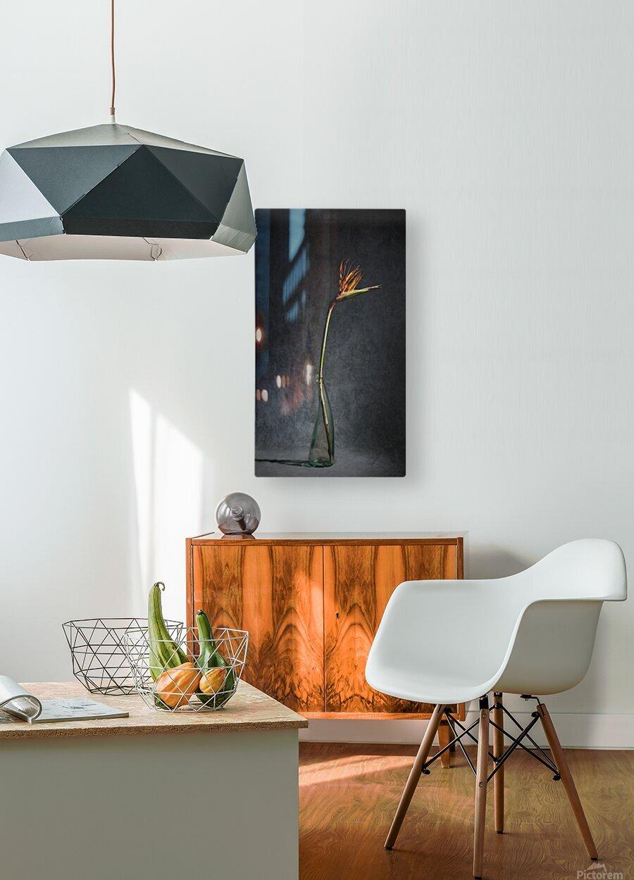 Etude Zen 3l  HD Metal print with Floating Frame on Back