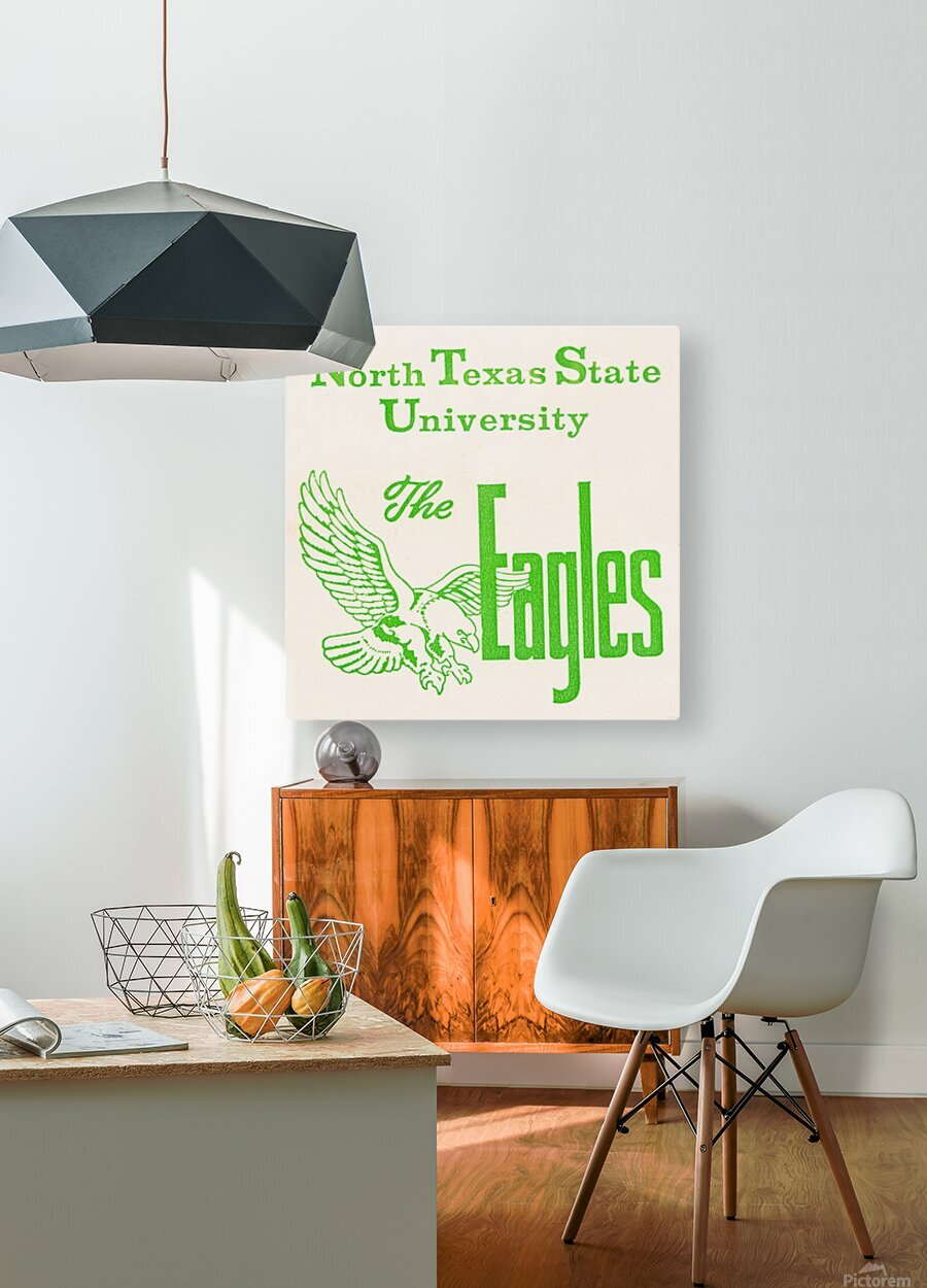 Vintage North Texas State University Eagles Art  HD Metal print with Floating Frame on Back