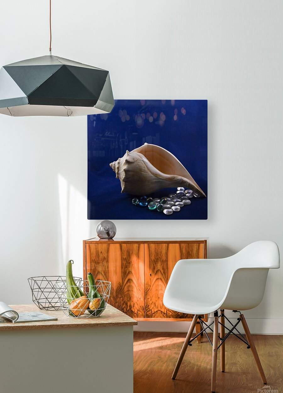 Single Conch Shell With Colored Glass   HD Metal print with Floating Frame on Back