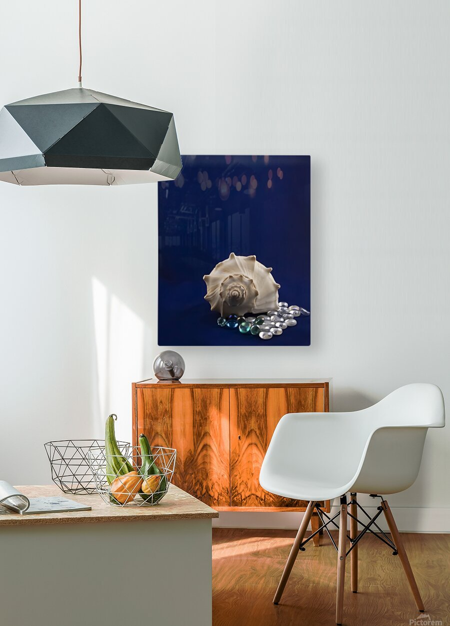 Spiral Conch Shell With Colored Glass  HD Metal print with Floating Frame on Back