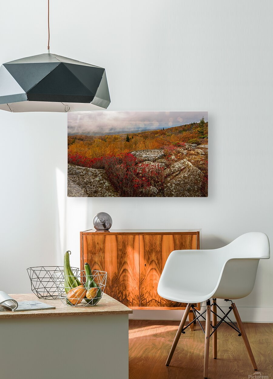 Colors of Nature apmi 1795  HD Metal print with Floating Frame on Back
