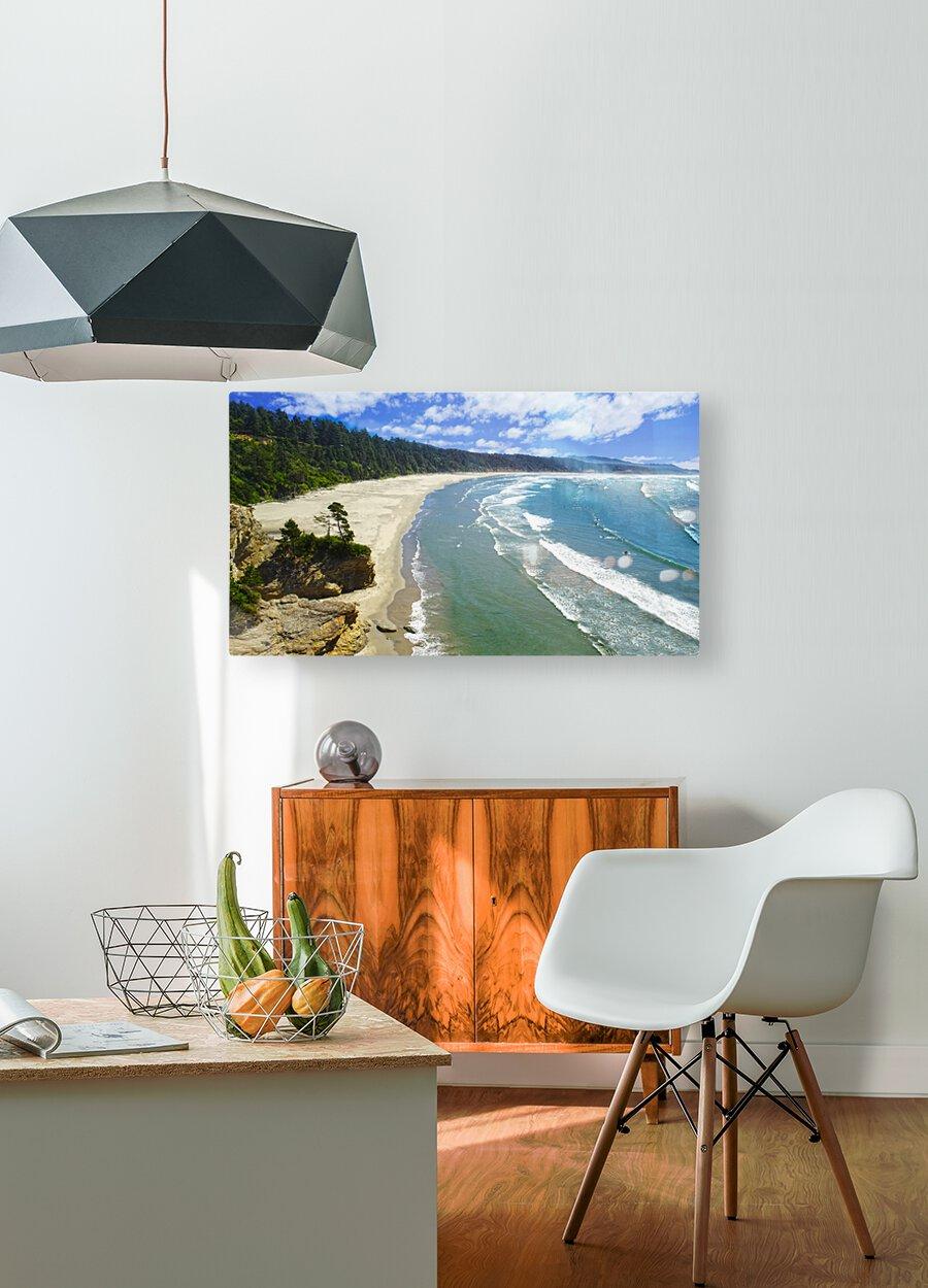 Wild Oregon Coast  HD Metal print with Floating Frame on Back