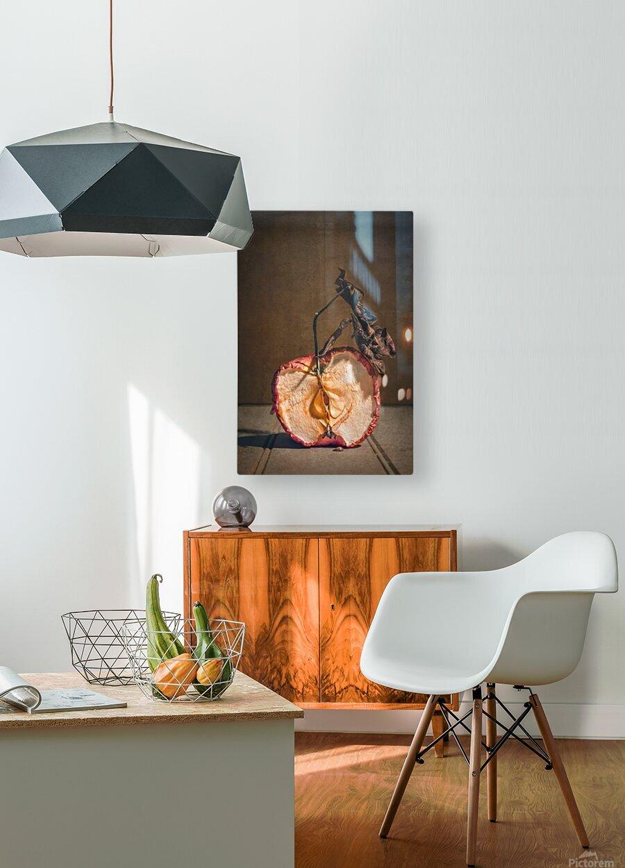 Etude Zen 7d suite  HD Metal print with Floating Frame on Back