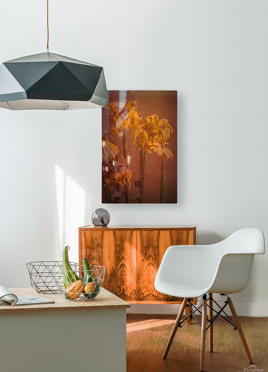 Etude Zen 7 p  HD Metal print with Floating Frame on Back