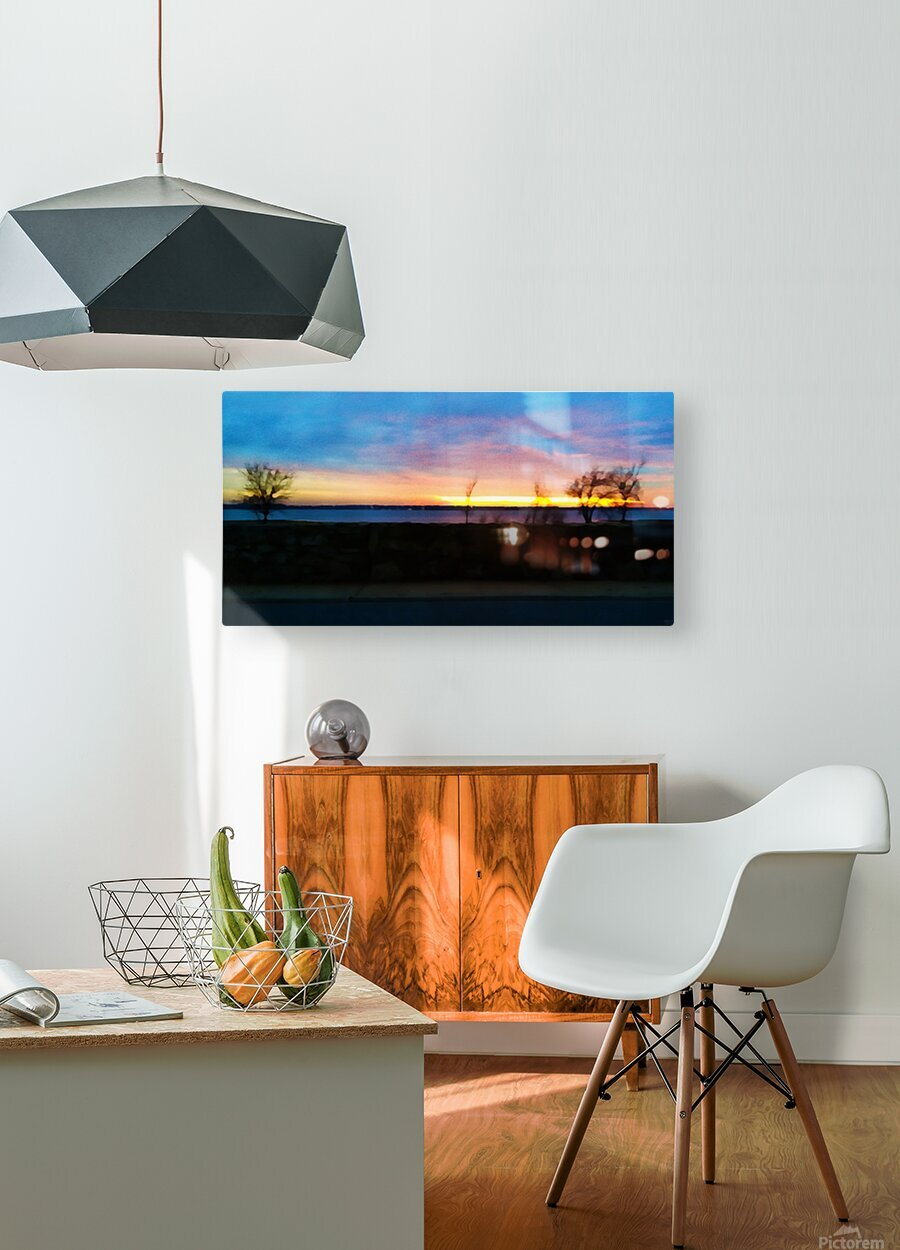 lake sunset 4 trees  HD Metal print with Floating Frame on Back