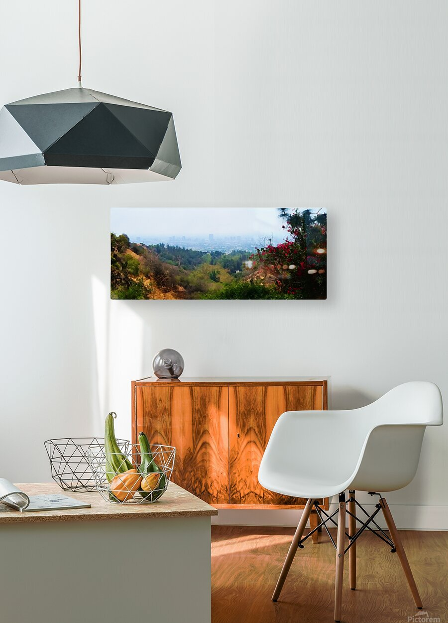 beauty of la  HD Metal print with Floating Frame on Back