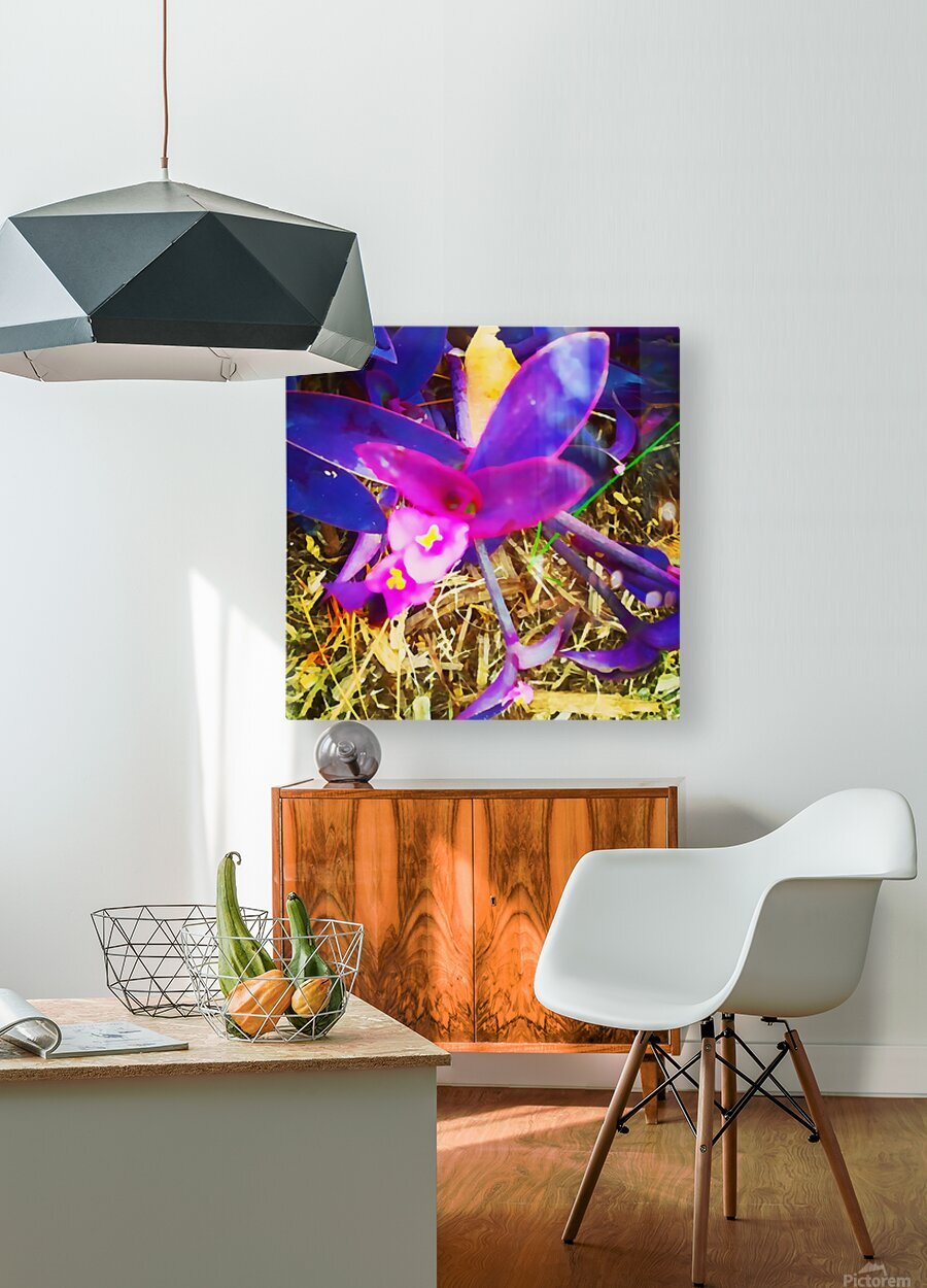 pink and purple  HD Metal print with Floating Frame on Back