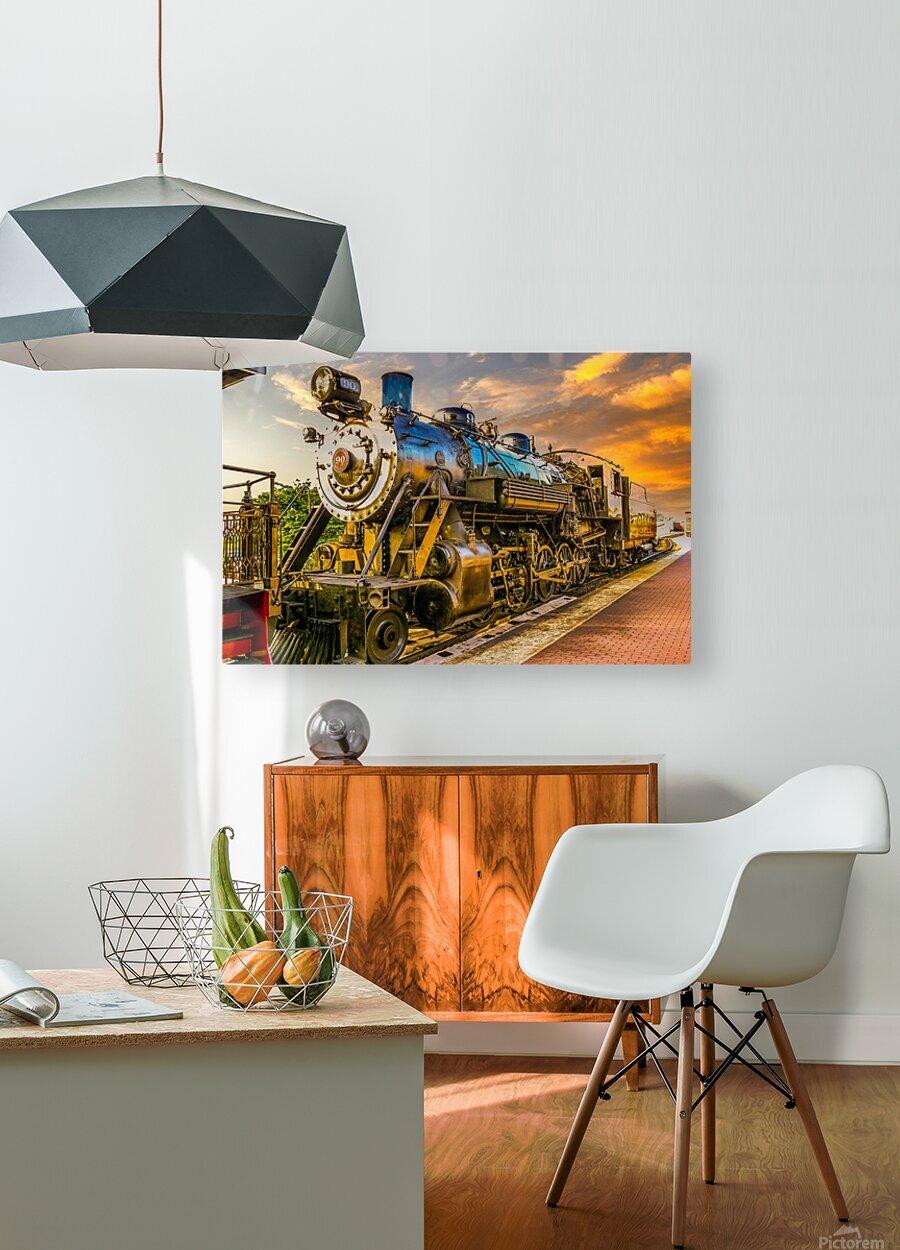 Strasburg 24  HD Metal print with Floating Frame on Back