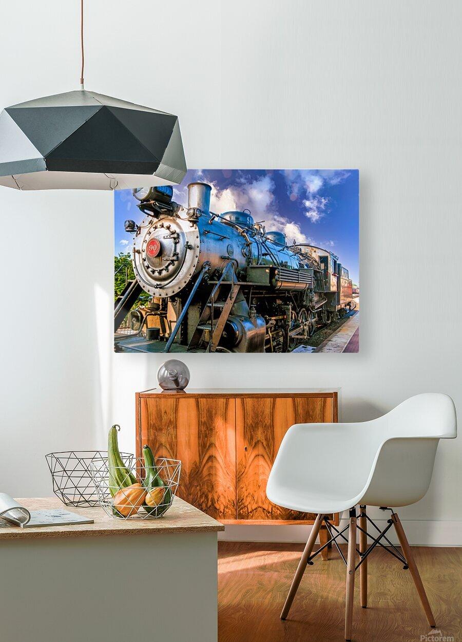 Strasburg 0172  HD Metal print with Floating Frame on Back