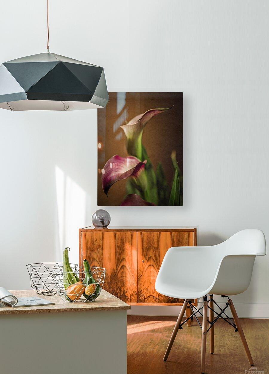 Etude Zen 8 b  HD Metal print with Floating Frame on Back
