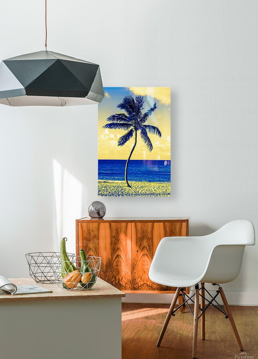 palm color 4  HD Metal print with Floating Frame on Back