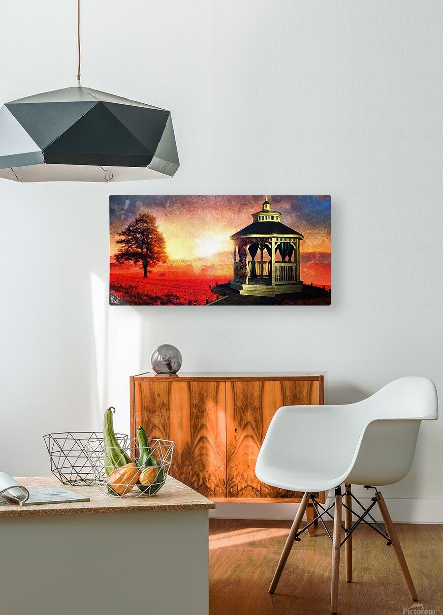 Backyard  HD Metal print with Floating Frame on Back