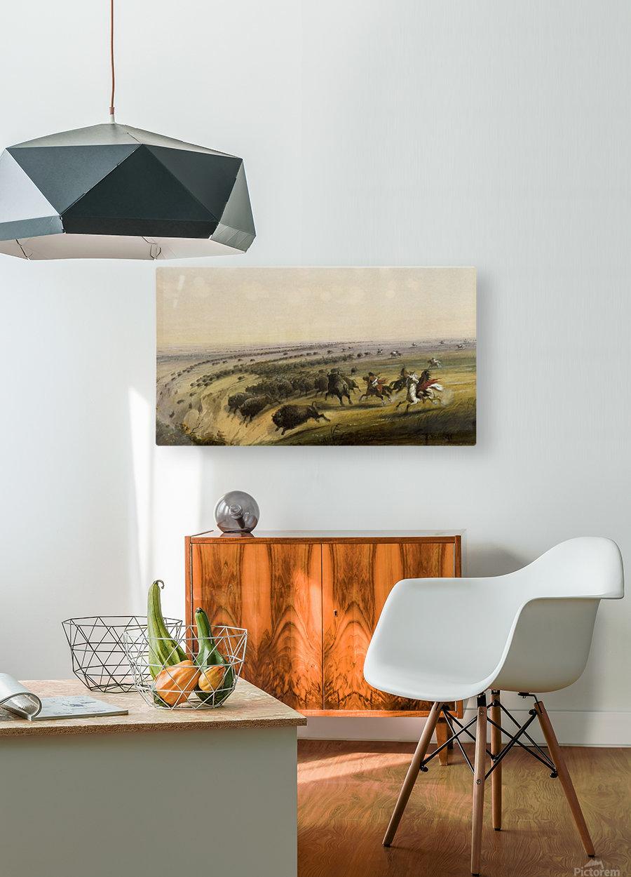Hunting Buffalo  HD Metal print with Floating Frame on Back