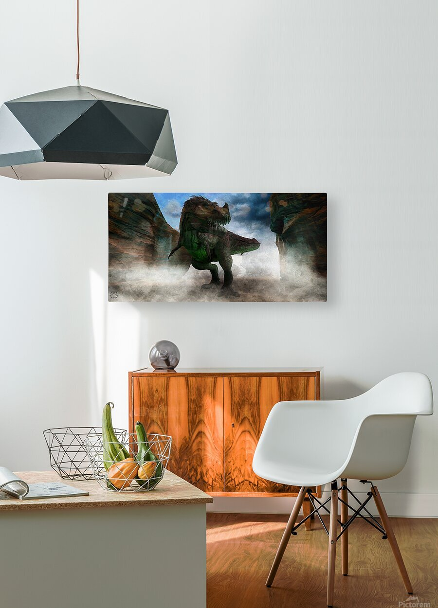 The Canyon  HD Metal print with Floating Frame on Back