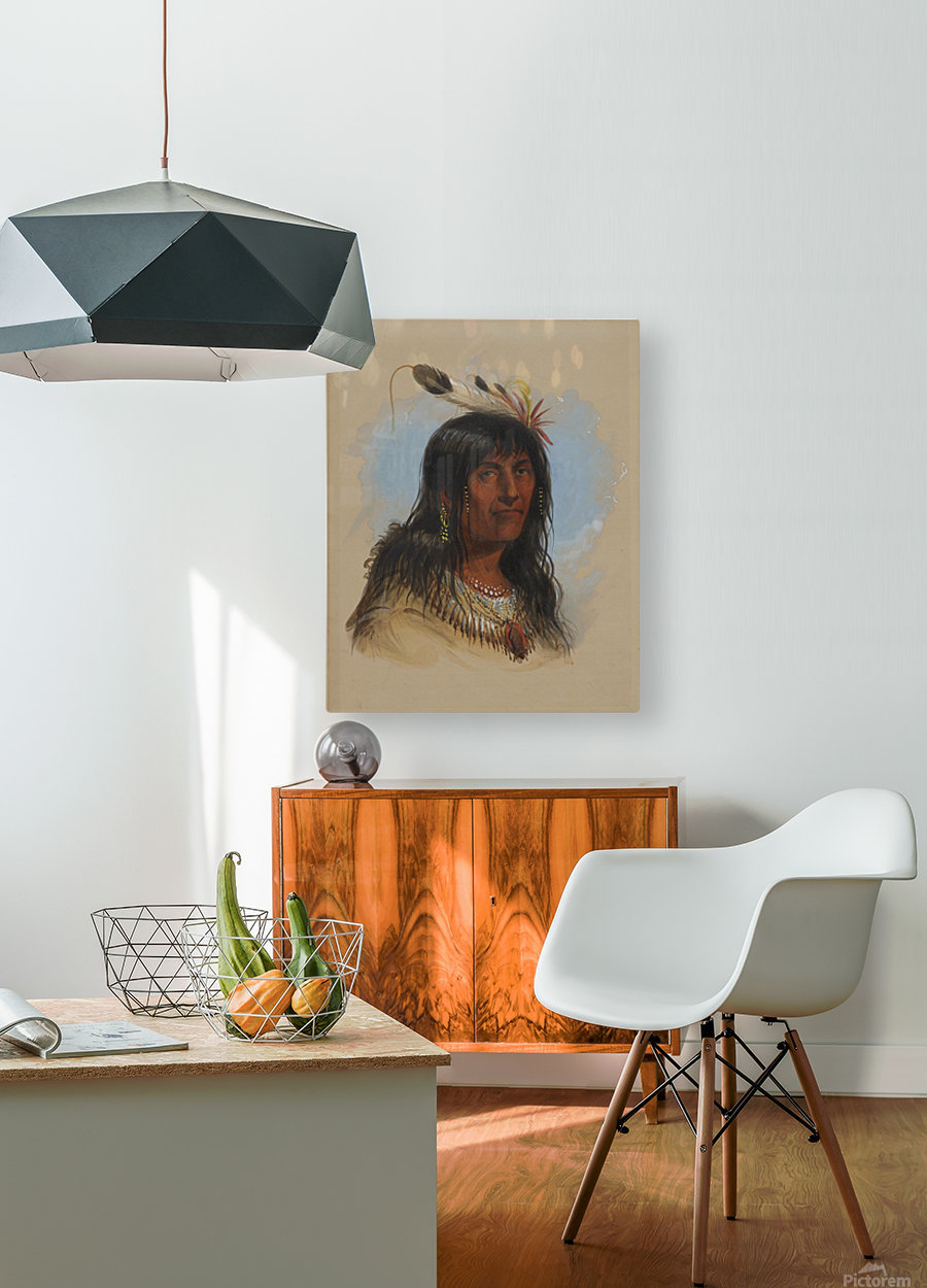 Big Bowl - Indian Chief  HD Metal print with Floating Frame on Back