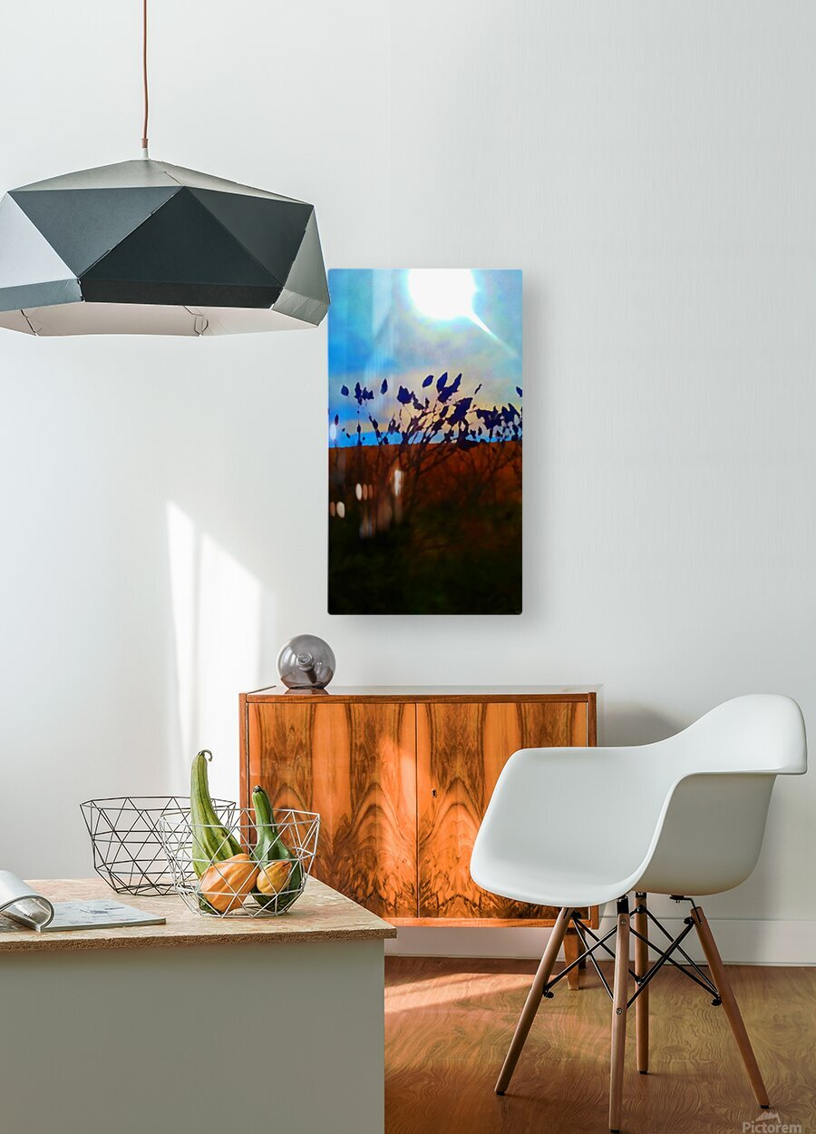 Mid Afternoon Beauty  HD Metal print with Floating Frame on Back