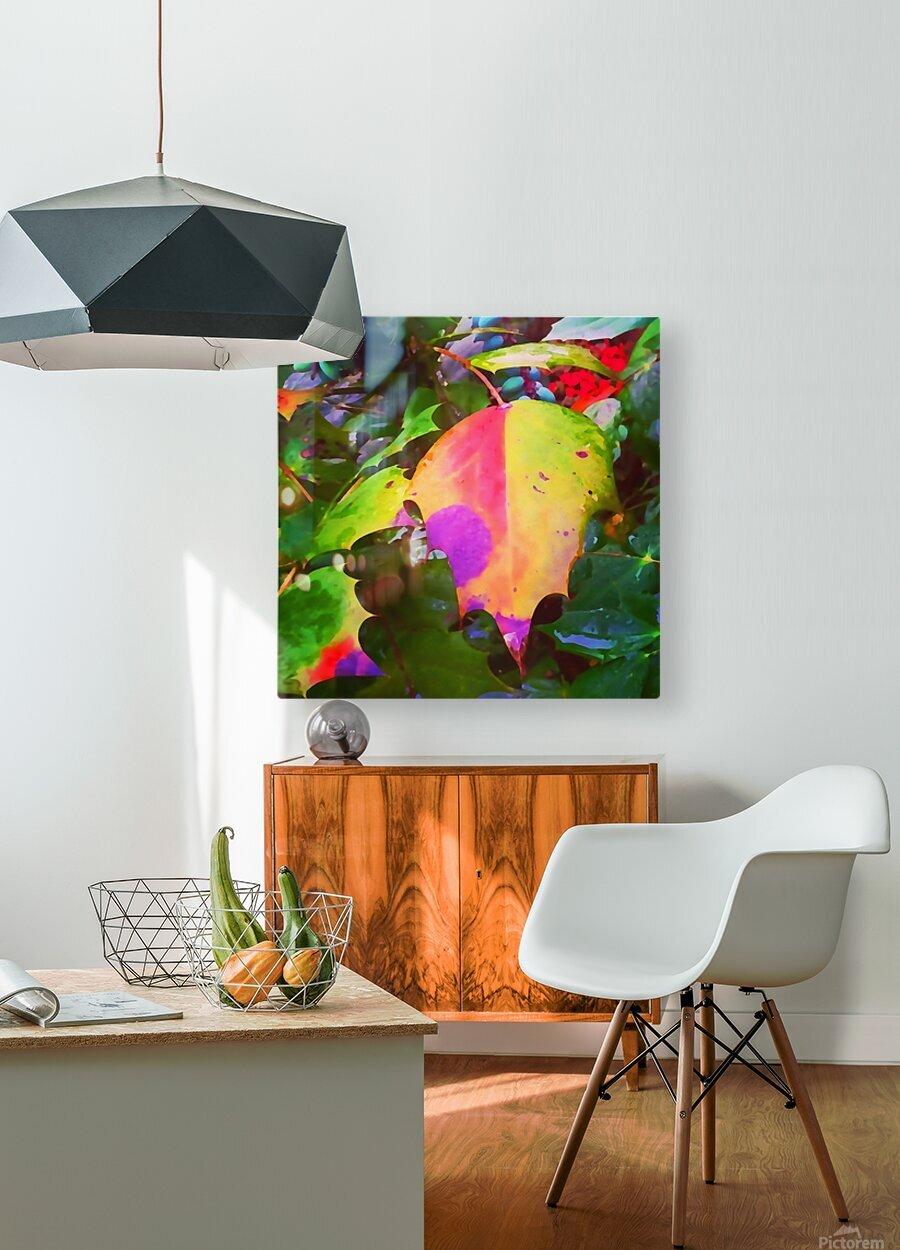Color Burst  HD Metal print with Floating Frame on Back