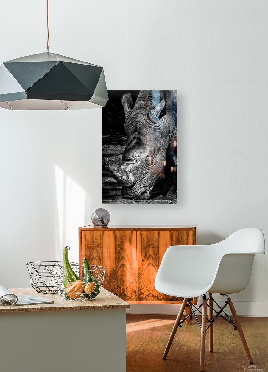 Rhinoceros  HD Metal print with Floating Frame on Back