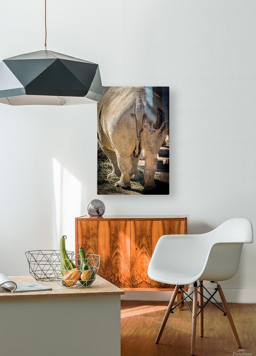 Rhinoceros 2  HD Metal print with Floating Frame on Back