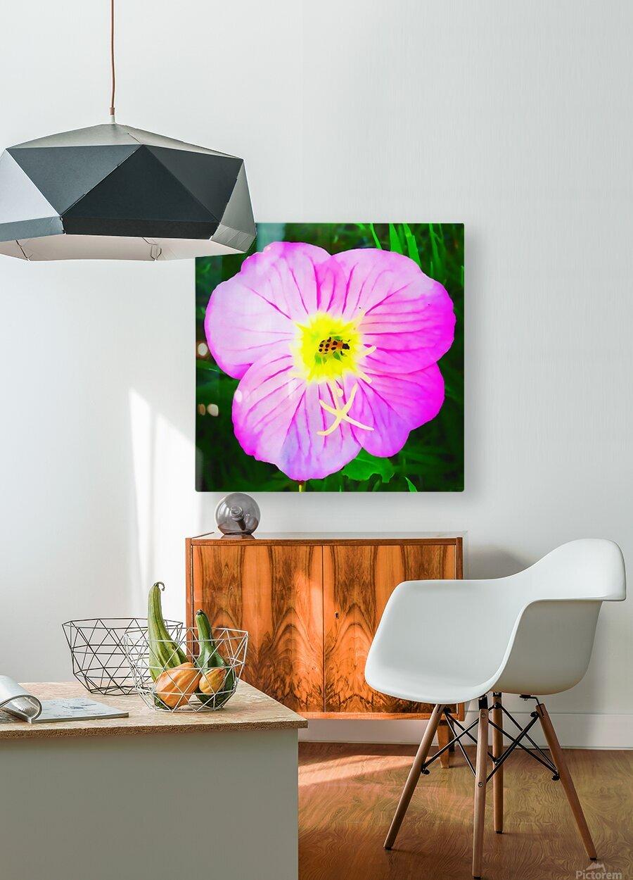 lady bug flower  HD Metal print with Floating Frame on Back